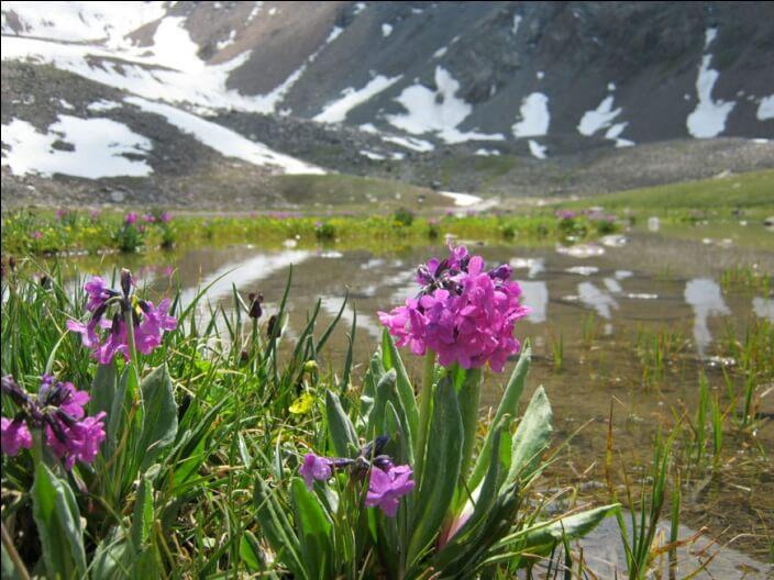 озеро в Горельнике