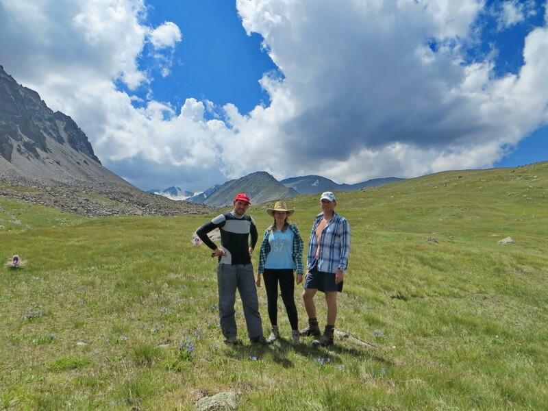 альпийские луга Тургеня