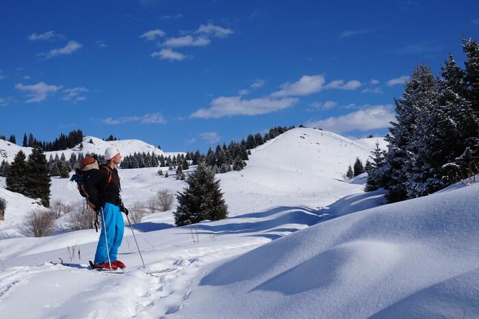 Кокжайляу на лыжах, фрирайд около Алматы