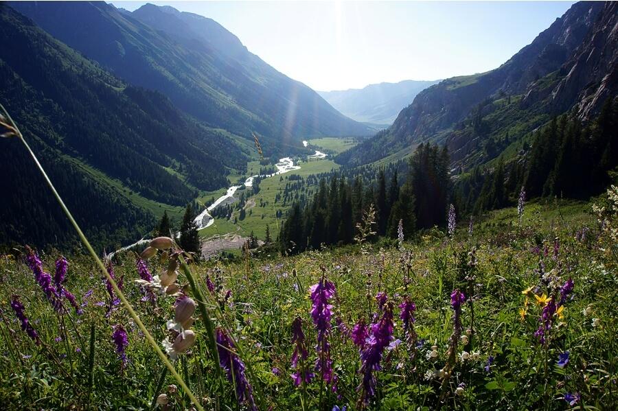 Вид на долину Бурхан Булака