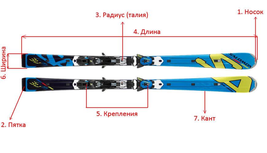 Из чего состоит лыжа. Характеристики.