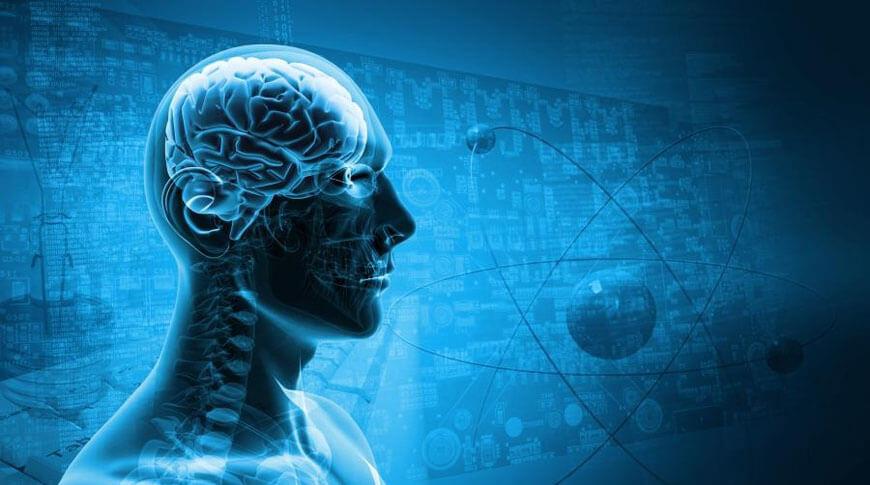 Мозг это детерминированная машина