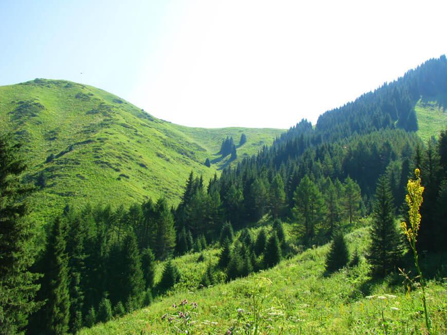 перевал Кокчака
