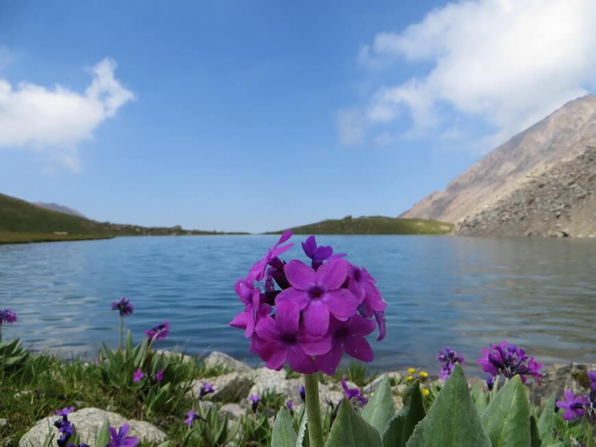 озеро Айколь, трекинг в Казахстане
