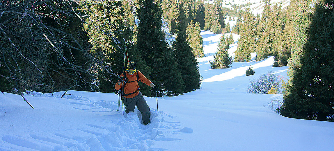 Freeride and backcountry winter