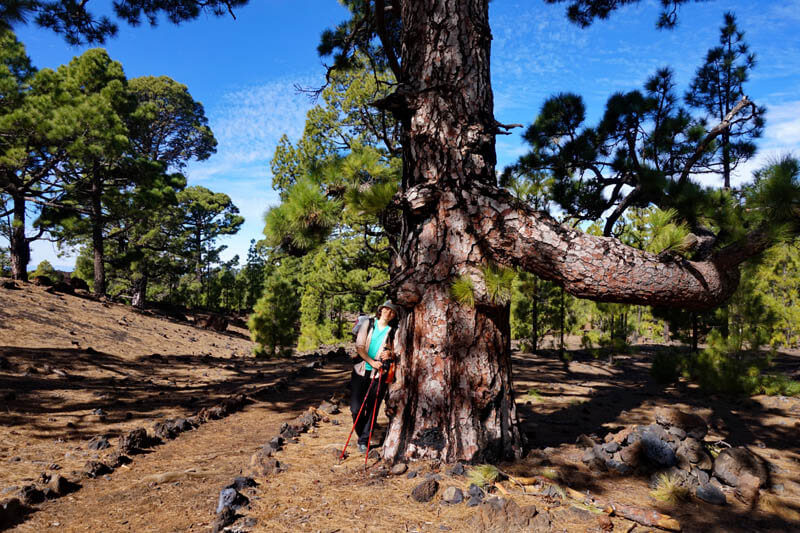 Reserva Natural Especial Chiny