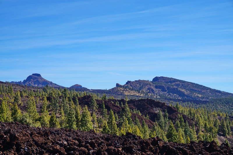 кальдера старого вулкана на Тенерифе