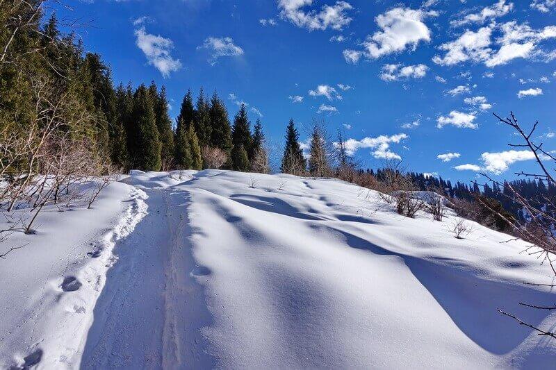 погода в январе