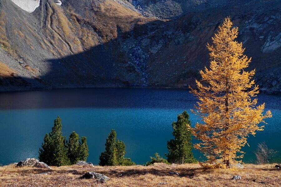 Радоновое озеро, Риддер