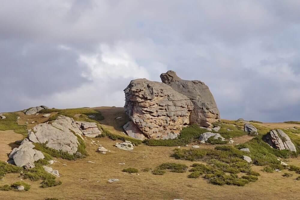 plateau-aktas-djungarskiy-alatau