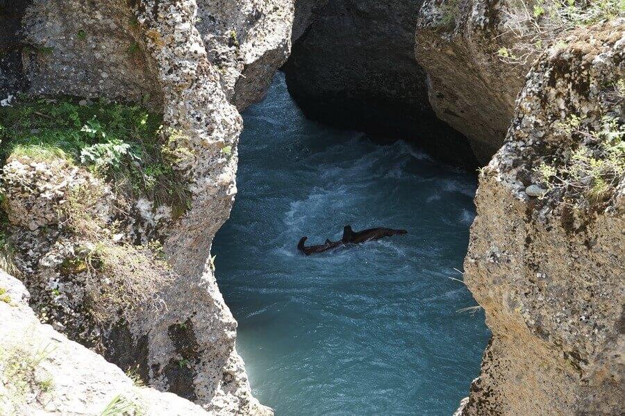 kanyon-aksu